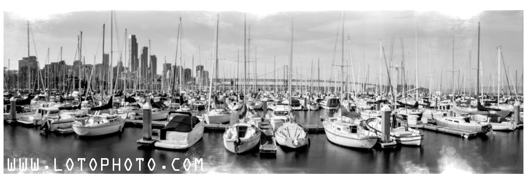 South Beach Harbor and terraPin Kaiju 6x19 camera, 86mm, f/215 with Fuji Acros